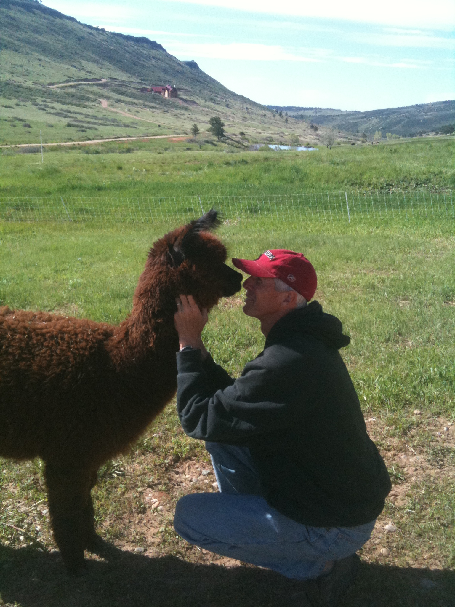 "Well I thought I would end with this one.  Here I am with Java, one of our sweet alpaca ""children"".  She is what we call our PR animal.  She loves people and loves attention.  She is also an incredible breeding female who we beleive will greatly enhance our genetic improvement herd."